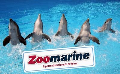 zoomarine waffelman